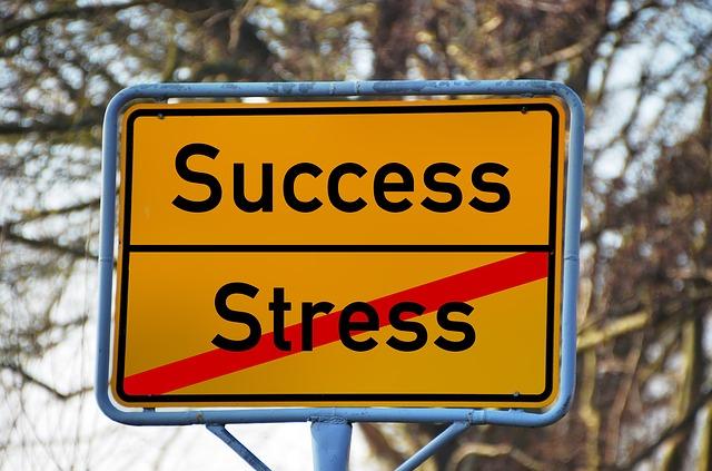 Erfolgsfaktor Stressresistenz